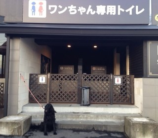 犬用トイレ.JPG